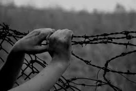 Hands on barbed wire