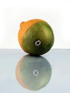 lemon-variations-1320644-639x846