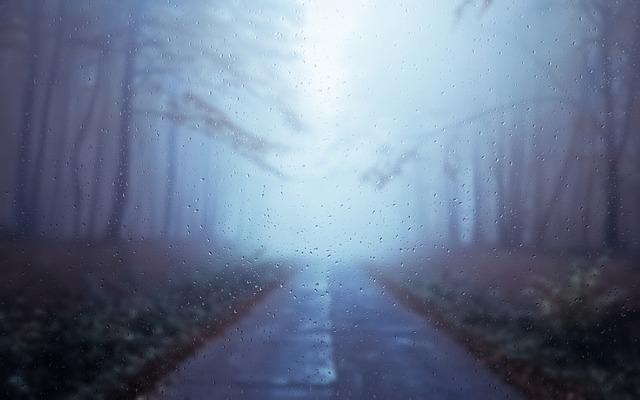rainy-day-2692279_640